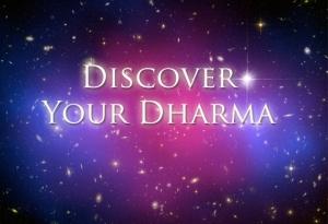 dharma-572